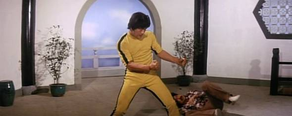 Goodbye Bruce Lee Movie