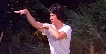 snake fist style kung fu